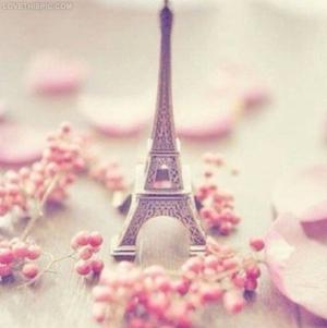 26601-Pink-Eiffel-Tower
